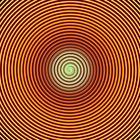 Im Fokus: abstrakt