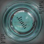 """"""" Im Fokus"""" die Quadratur des Kreises"""
