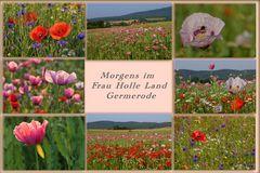 im Frau Holle Land