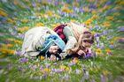 Im Frühlingsrausch