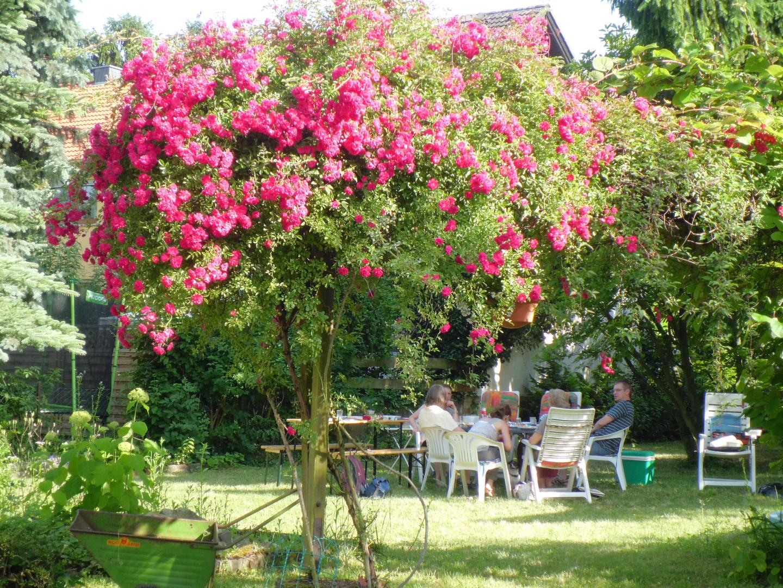 Im Garten im Sommer vor ein paar Jahren