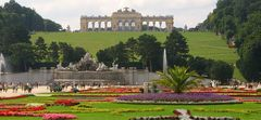 Im Garten von Schloss Schönbrunn in Wien;  Blick auf die Gloriette (Wienserie)