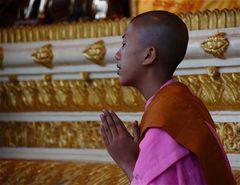 im gebet, shwedagon pagode yangon, burma 2011