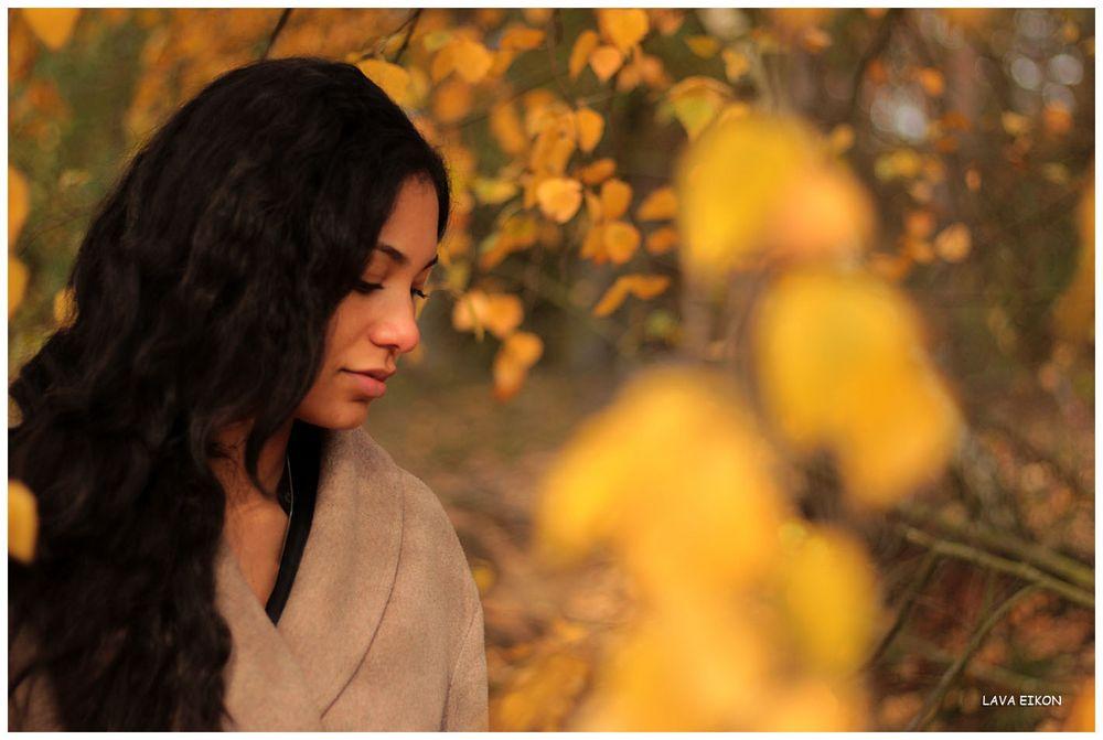 Im Gold des Herbstes I