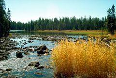 Im Grand Teton Nationalpark