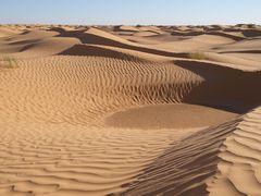 Im grossen Sandkasten