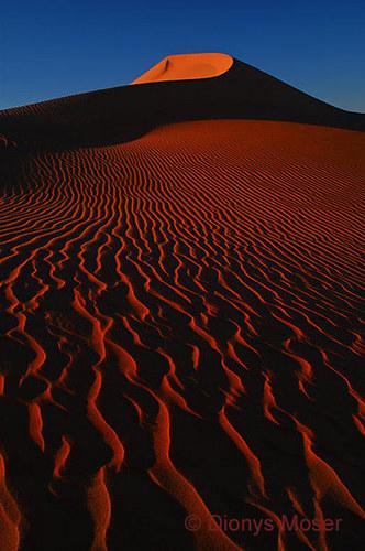 Im Grossen Sandmeer Ägyptens