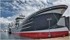 Im Hafen Skagen
