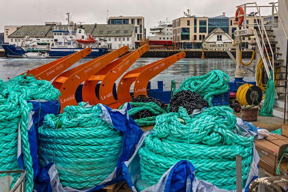 Im Hafen von ALESUND (2)