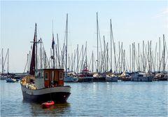 Im Hafen von Enkhuizen (NL)