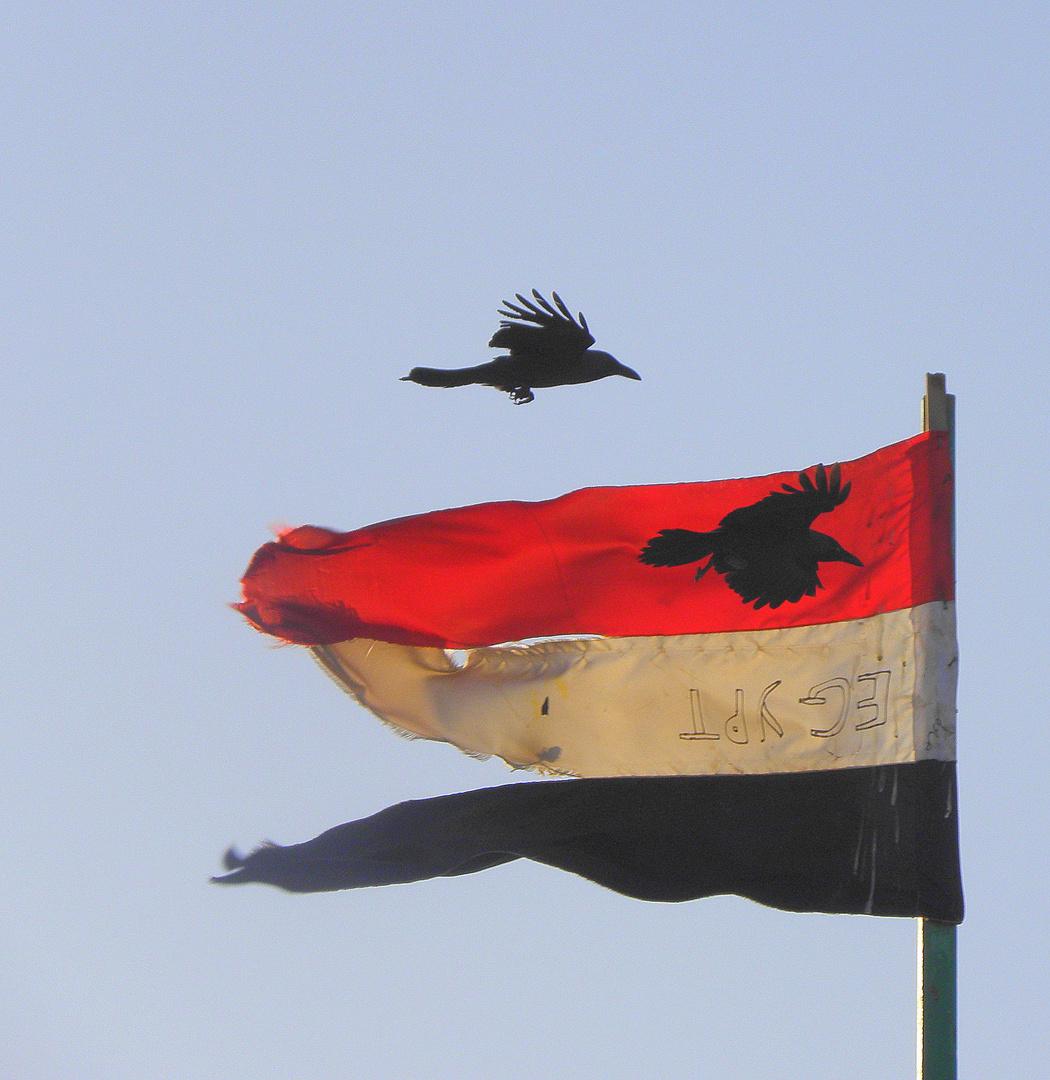 im Hafen von Hurghada