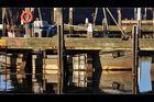 Im Hafen von Thorsminde, DK