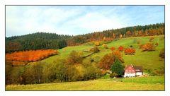Im herbstlich bunten Schwarzwald