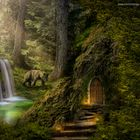 Im Herzen des Waldes