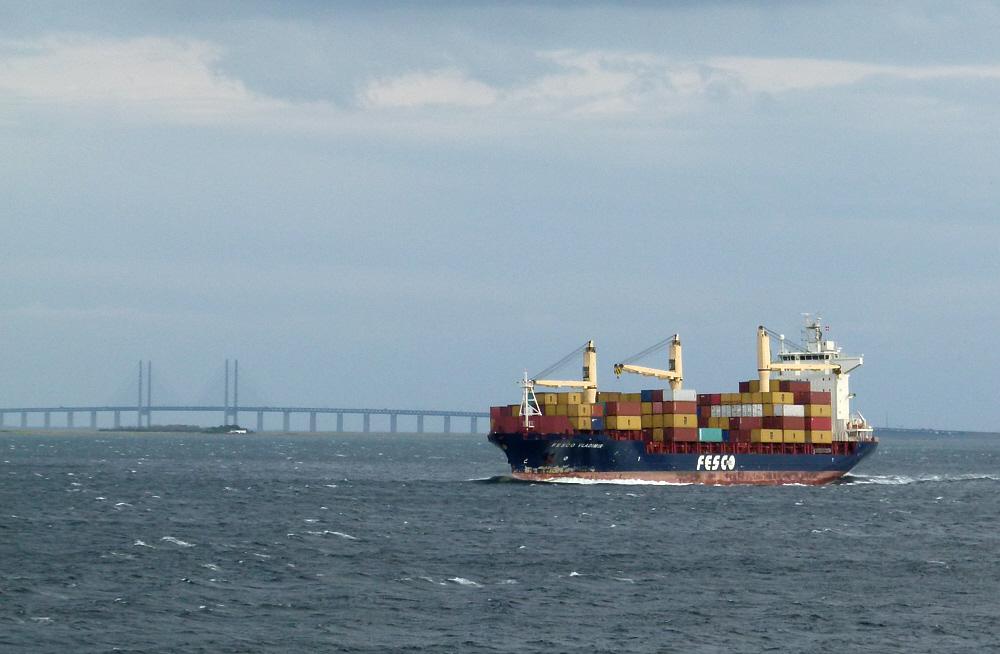 Im Hintergrund die Öresundbrücke