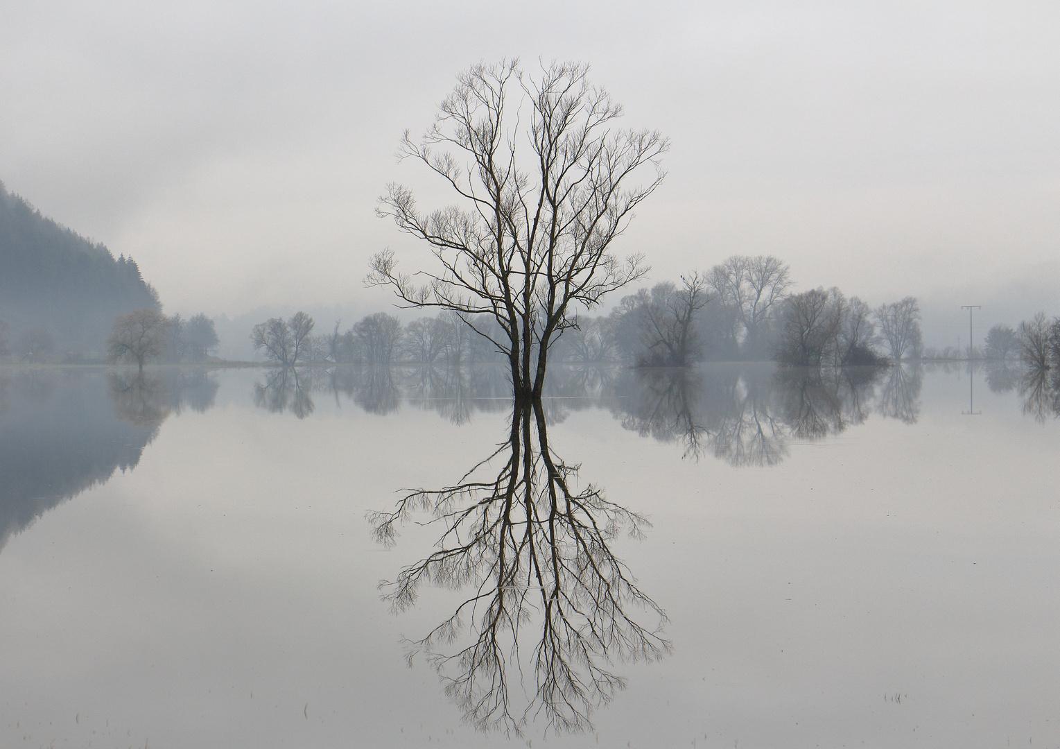 im Hochwasser