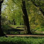 Im Husumer Schlosspark