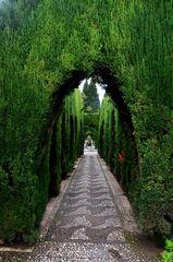 Im Jardines del Generalife Alhambra
