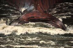Im Kielwasser des TUG Ranger