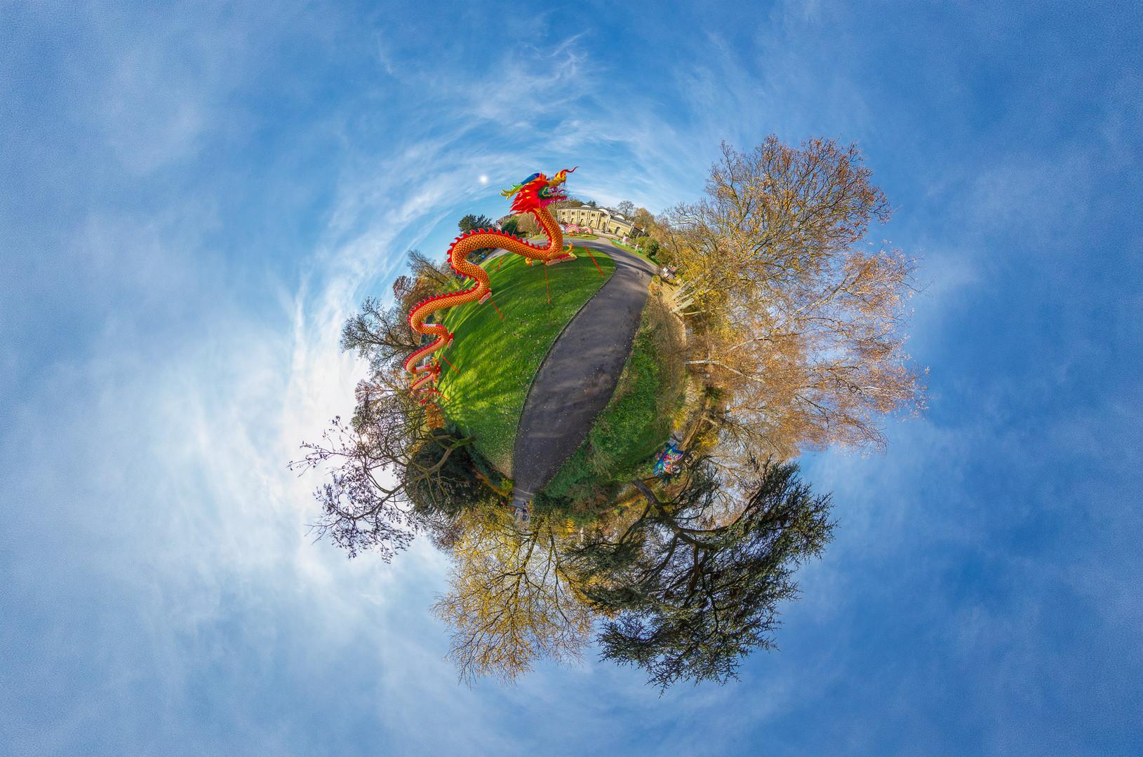 Im Kölner Zoo dreht sich alles um China Light