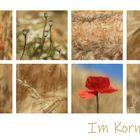 Im Kornfeld II