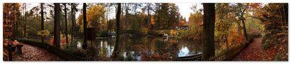 Im Kurpark... von Martin Ki