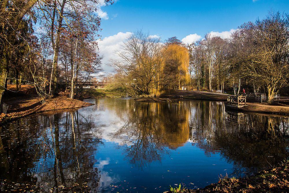Im Kurpark von Bad Nauheim Foto & Bild | spezial