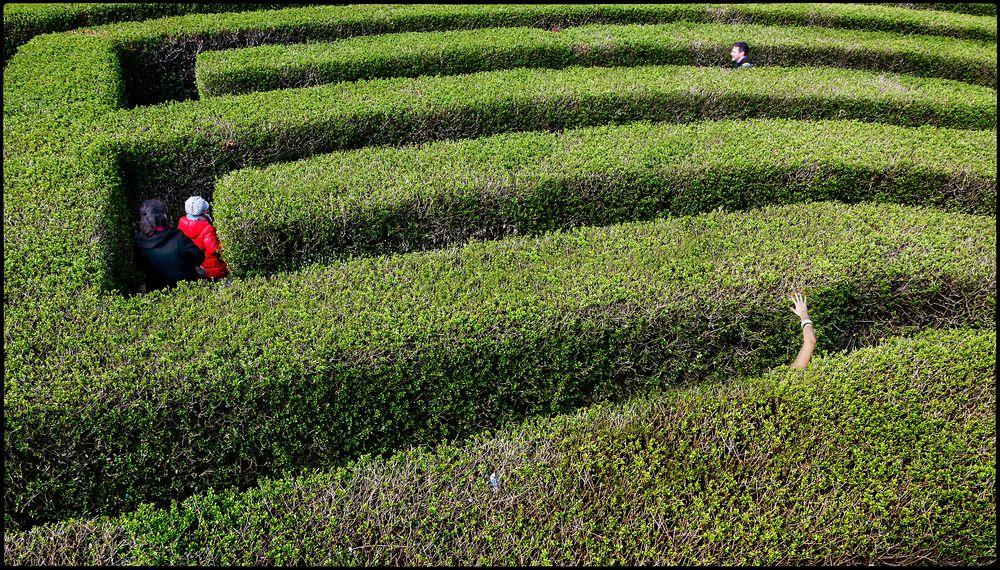 """Im Labyrinth verirrt"" :o))"