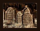Im Land der Schatten ( Jüdischer Friedhof Floss / Oberpfalz )