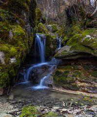 *Im Land der Wasserfälle und Moose II*