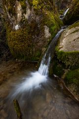 *Im Land der Wasserfälle und Moose V*