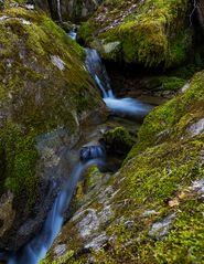*Im Land der Wasserfälle und Moose VI*
