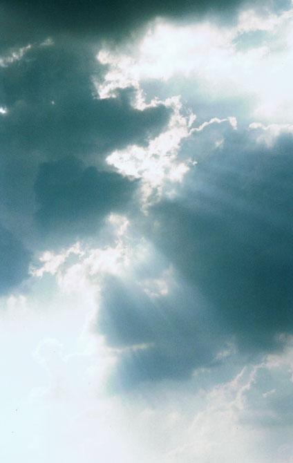 Im Licht der Schöpfung