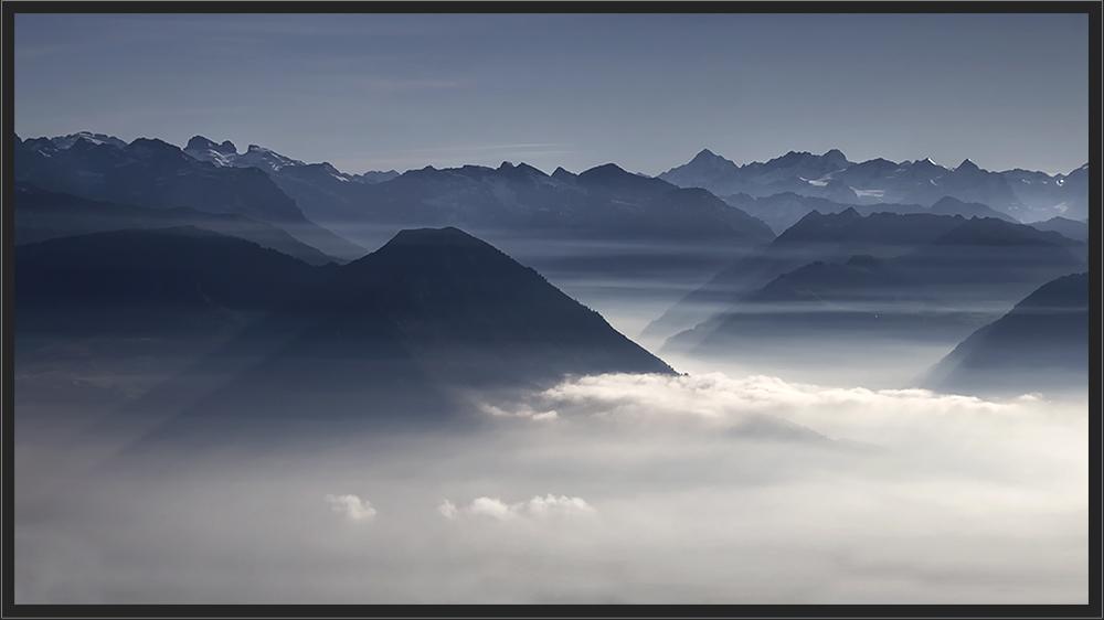 Im Licht des Nebels