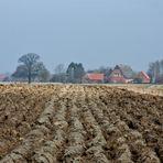 Im Märzen der Bauer........