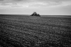 Im Märzen der Bauer....