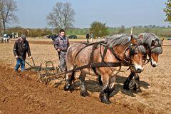Im Märzen der Bauer ... (I)