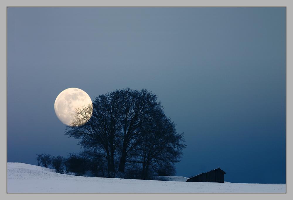 Im Mondschein...