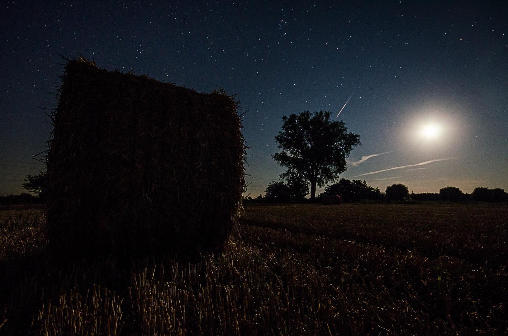 Im Mondschein