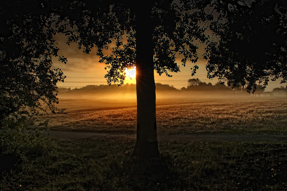 im Morgengrauen....
