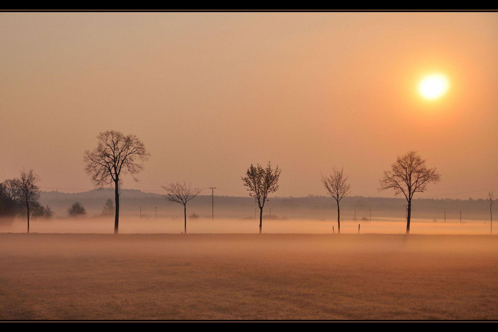 im Morgennebel......nella nebbia del mattino ....
