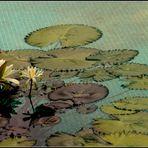 im Mosaikbecken - Dienstag ist Spiegeltag -