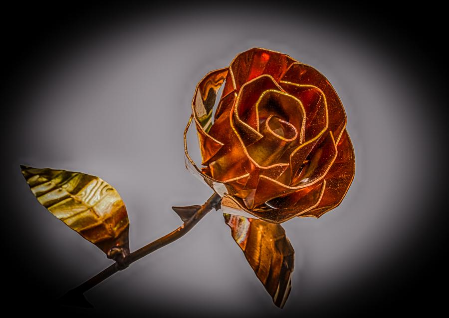 Im Namen der (Kupfer-)Rose...