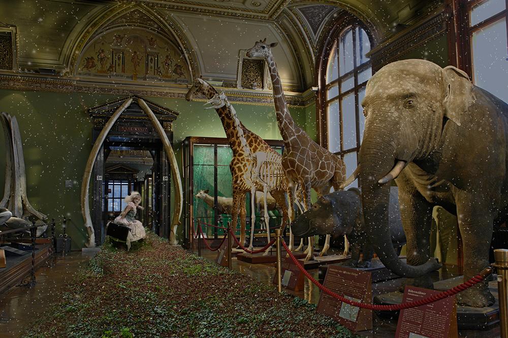 im naturhistorischen Museum in Wien