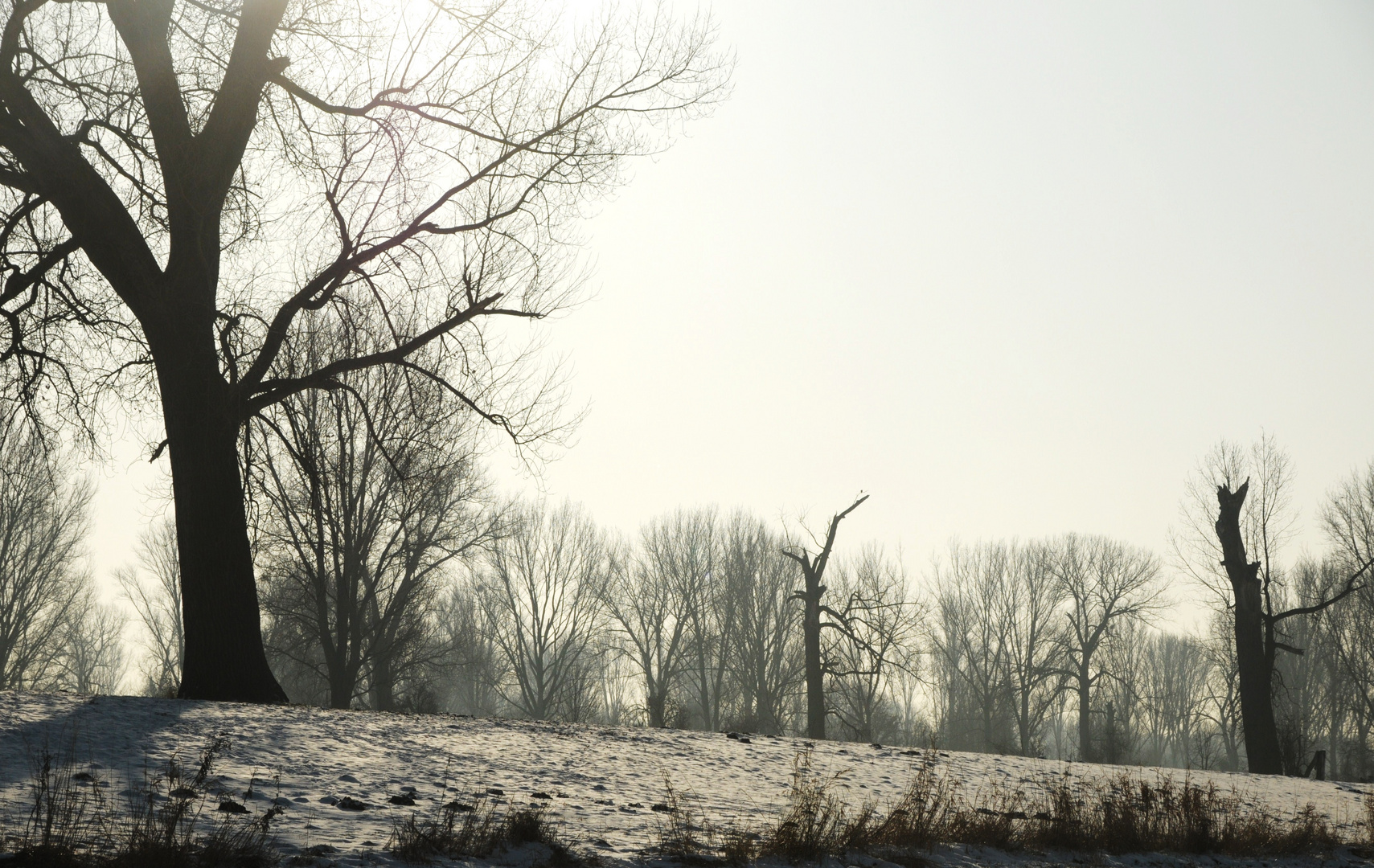 Im Naturschutzgebiet . . .