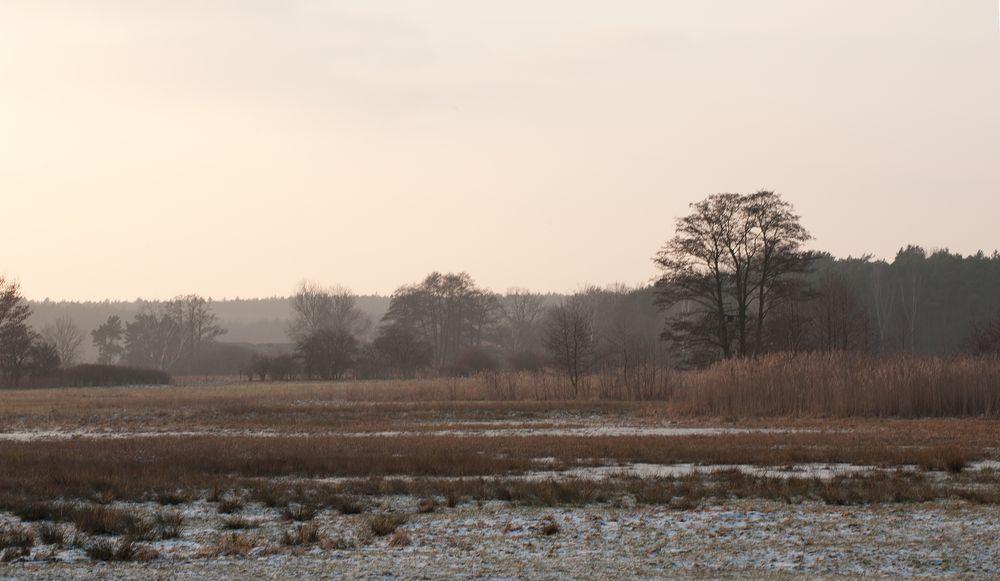 im Naturschutzgebiet