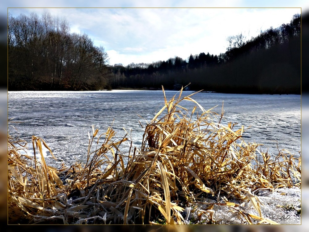 "Im Naturschutzgebiet ""Rosenheimer Lay"" im Westerwald"