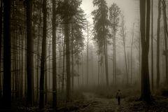 ... im Nebel