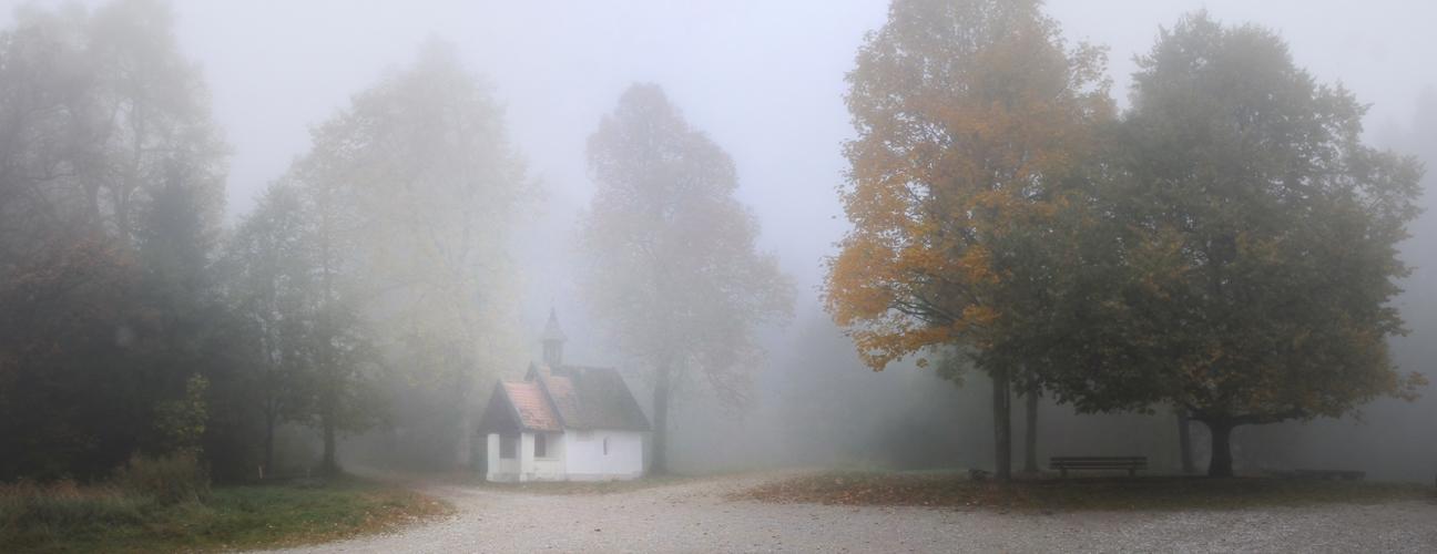 Im Nebel I