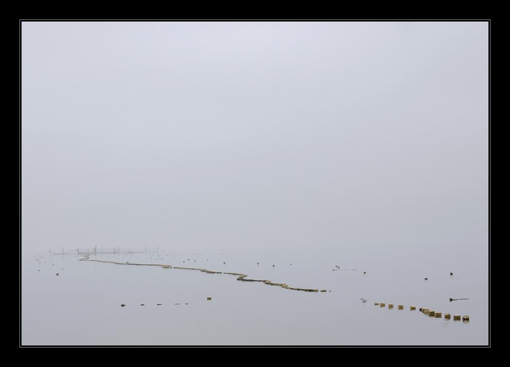 im Nebel N°12